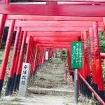 【観光】二葉山平和塔まで登ってきた!