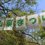 山菜祭りin鹿ケ谷