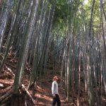 Hiking in and around Hiroshima